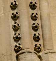 Ballflower, South Aisle window, Gloucester Cathedral